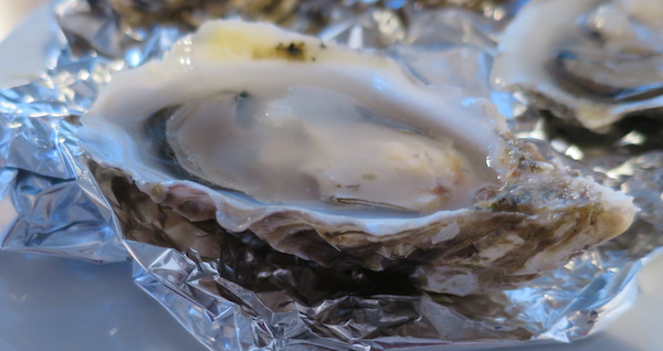 17B-Oyster